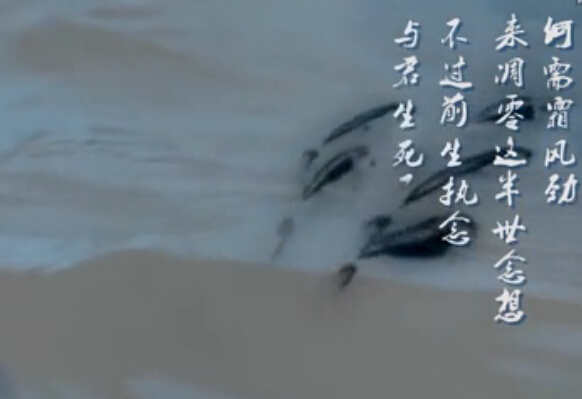 《莽荒纪2》主题曲MV正式发布